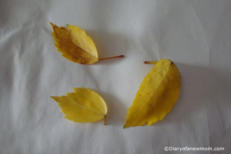 Toddler-crafts-Leaf-printing