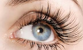 What Causes Your Eyelashes to Stop Growing?