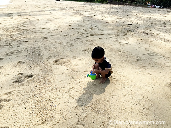 Beach Activities for Toddlers
