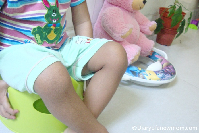 Essential Items for Potty Training