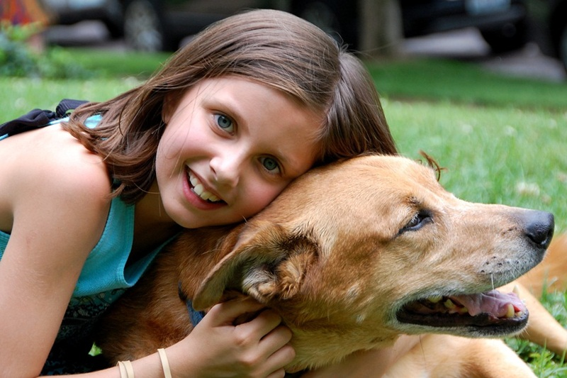 Why You Should Get A Pet If You Have Children