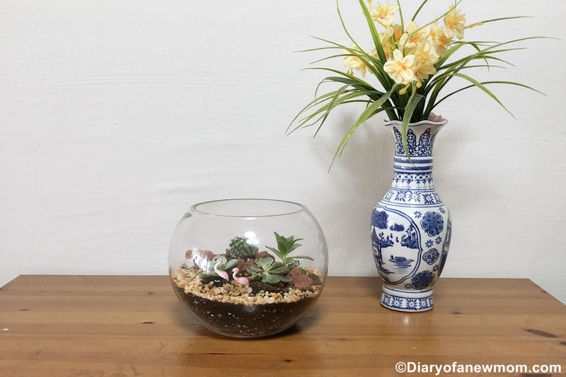DIY terrarium kit from Masons Home Decor #Review