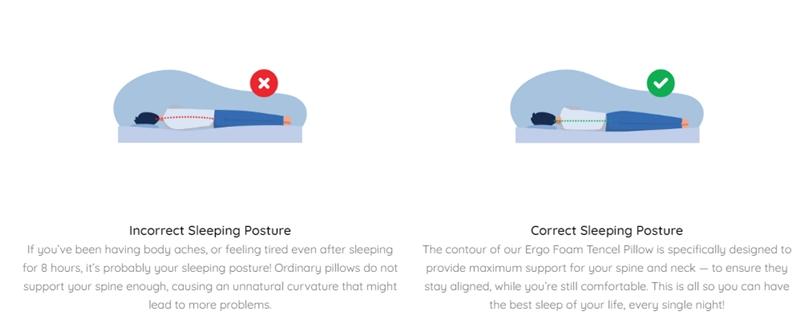Sigmund Home Ergo Foam Tencel Pillow Review