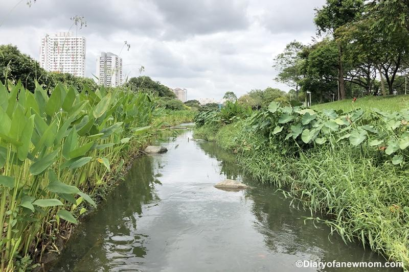 Bishan-Ang-Mo-Kio-park-Singapore