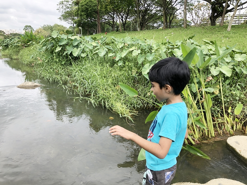 Ideas to help children connect with nature
