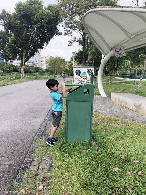 Clean green Singapore